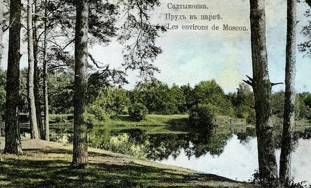 О знаменитых салтыковских прудах знают далеко за пределами Москвы и Подмосковья их называют жемчужиной Балашихи.